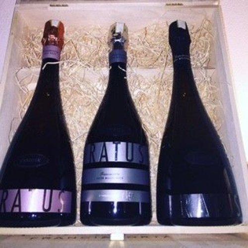 Cofanetto da 3 posti Bottiglia