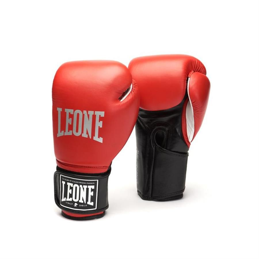 "Guanti Boxe ""The One"" GN101"