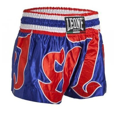 Leone Pantaloncino Power Flag per Thai Boxe AB742