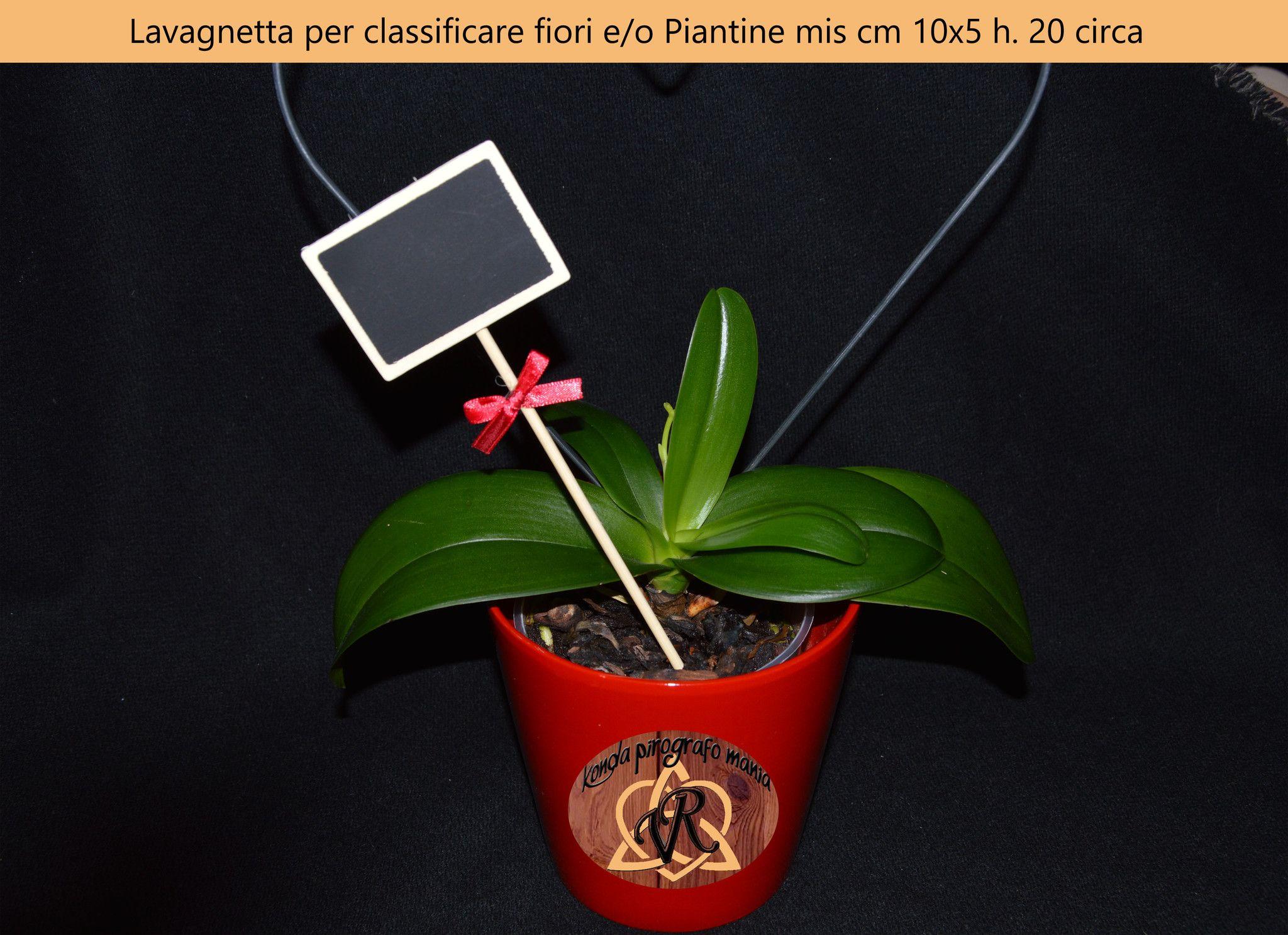 Lavagnetta per classificare fiori e/o Piantine