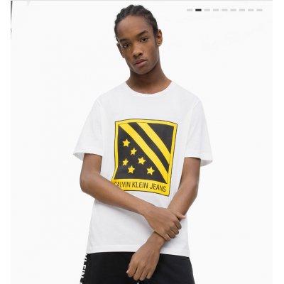T-shirt Stampa Bandiera Calvin Klein COd. J30J312117