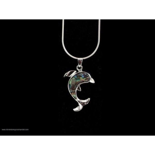 Trailer di delfino -conchiglia Abalone