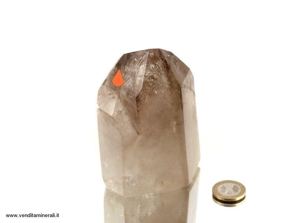 Libellula in cristallo di rocca