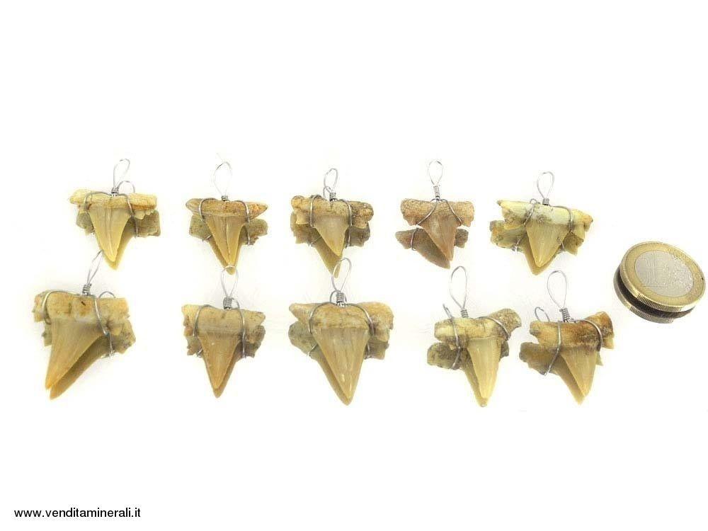 Ciondolo a dente di squalo (fossile) - 10 pezzi