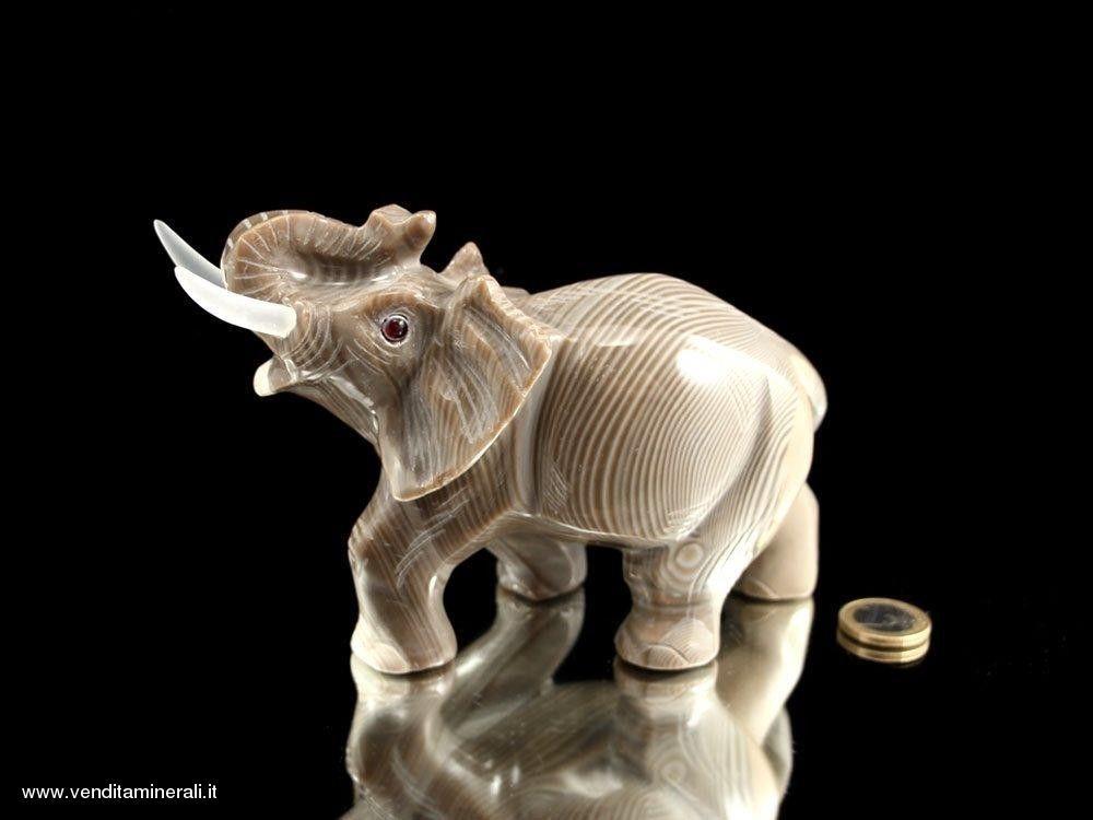 Elefante - bella incisione di selce