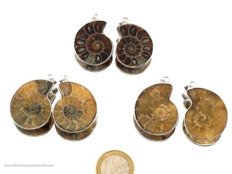 Orecchini di Ammonite