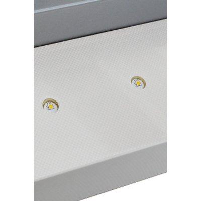Applique APL 5 Metallo chiaro e base neutra