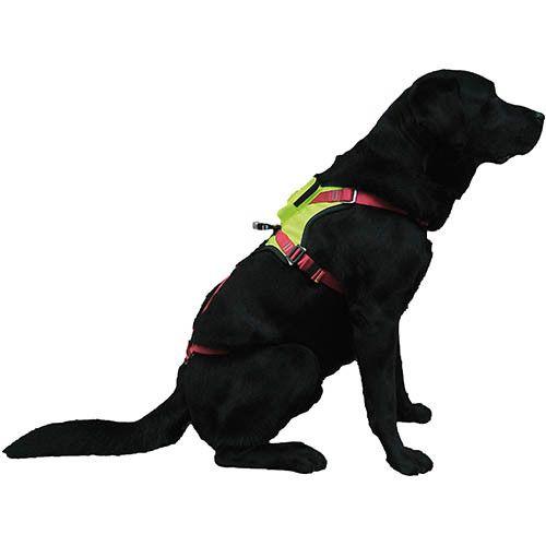 KRONOS - Imbracatura per cani