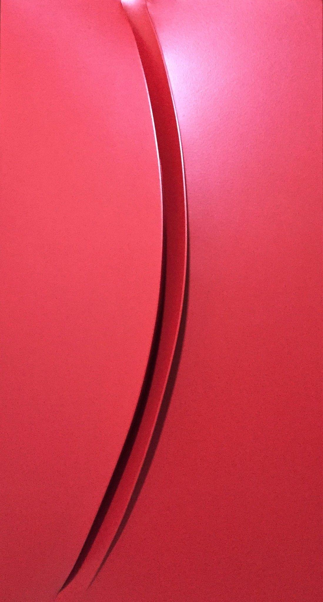 """TELA ESTROFLESSA GIUSEPPE AMADIO """" GLERI """"  dimensioni L 71 x H 131 cm."""