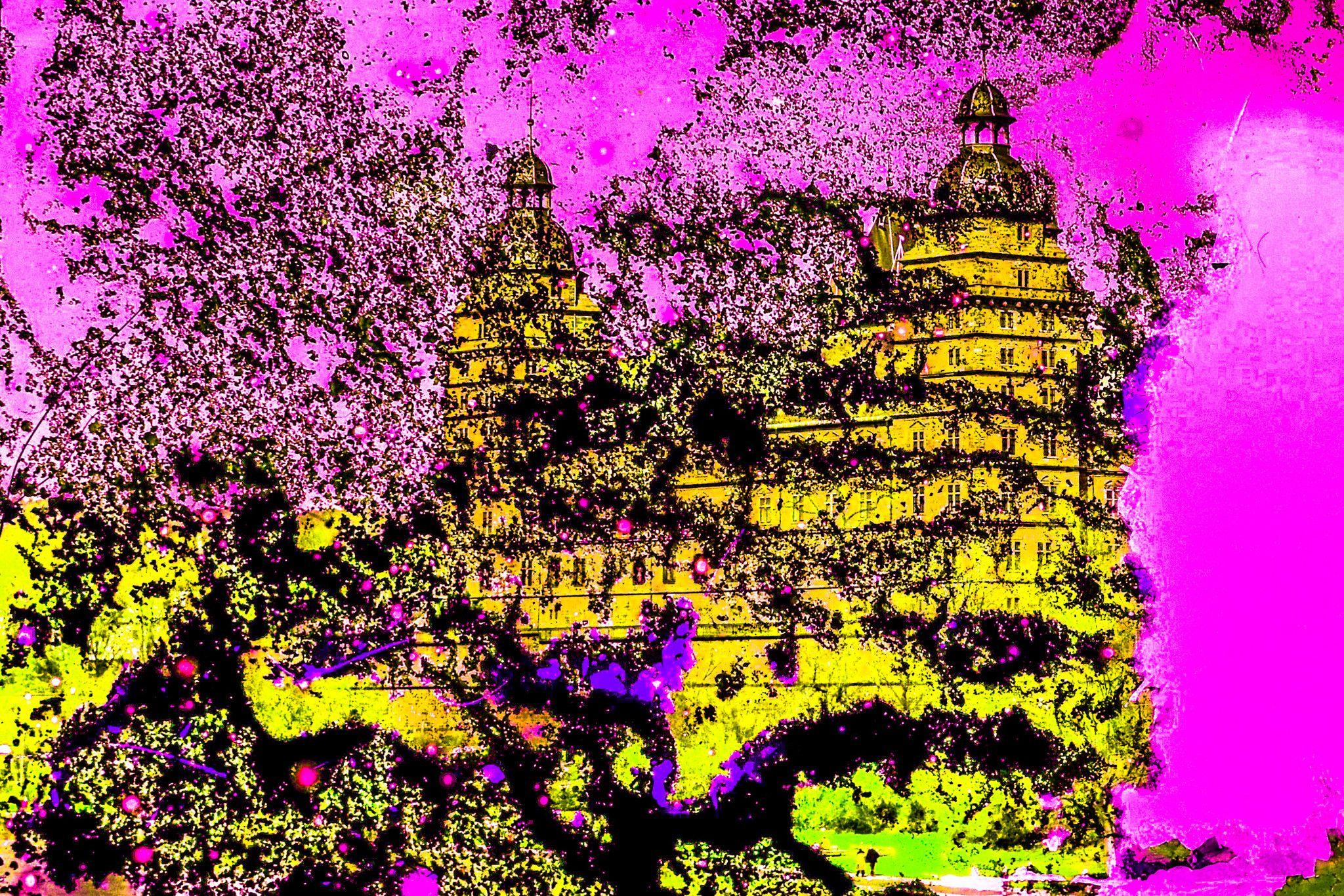 "FOTOGRAFIA GUSE - BORNEMANN "" CASTELLO DI ASCHAFFENBURG ""  dimensioni L 75 x H 50 cm."