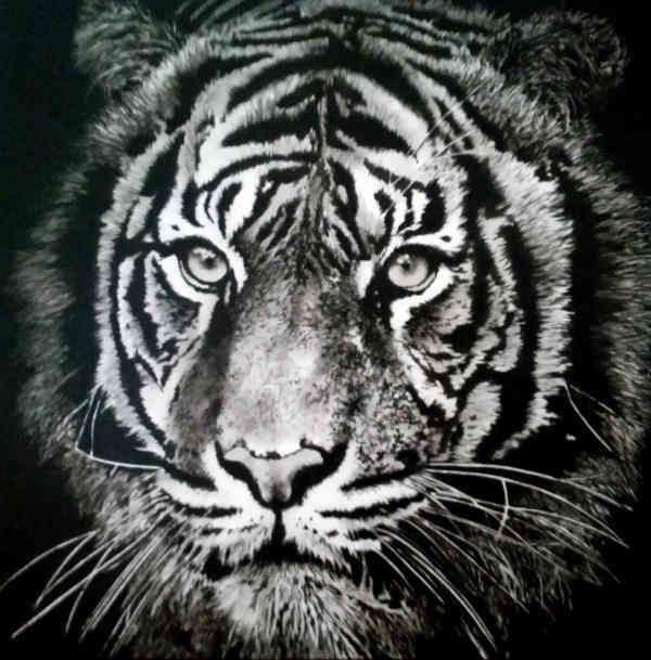 ACRILICO SU TELA  TIZIANA SANNA  ' DARK TIGER ' dimensioni L 100 x H 100  cm.