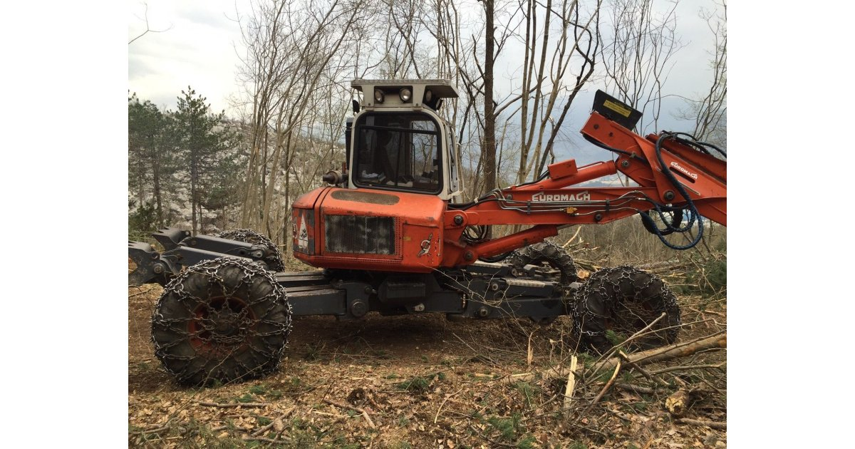 Ragno Euromach 9000 Forester usato  Macchine Usate  Shop Online: Forestal Service