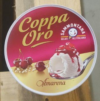 Gelato Coppa Oro Amarena gr 500 Sammontana